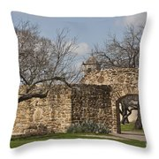 History Awaits Throw Pillow