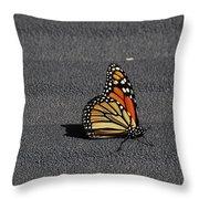 Hitchiker 5782 Throw Pillow