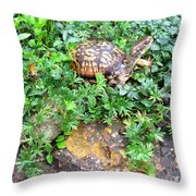 Hitchin A Ride On A Turtle  Throw Pillow