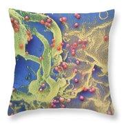 Hiv Viruses Throw Pillow