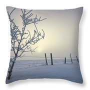 Hoar Frost Covering Trees And Barbed Throw Pillow