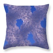 Hoar Frost On Fence Throw Pillow