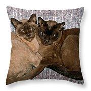 Hold A True Friend Throw Pillow
