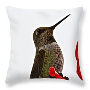 Hold That Pose Throw Pillow