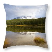 Holding Back The Tempest Throw Pillow