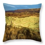 Hole In The Basin Throw Pillow