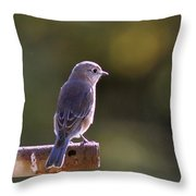 Hole In The Pipe Throw Pillow