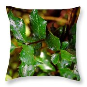 Holly Daze Dew Drops Throw Pillow