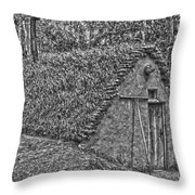 Home On Earth  Throw Pillow