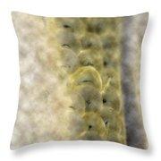 Home Planet - Egg Vestibules Throw Pillow