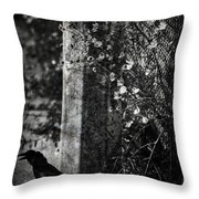 Homebound Wings Throw Pillow