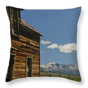 Homestead View Of The Crazy's Throw Pillow