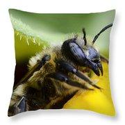 Honey Bee 2 Throw Pillow