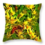 Honey Bee And Sedum  Throw Pillow