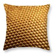 Honey Bee Eye Throw Pillow