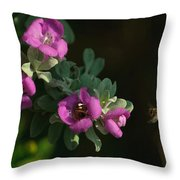 Honey Bees On Sage 2 Throw Pillow
