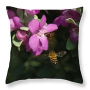 Honey Bees On Sage 3 Throw Pillow