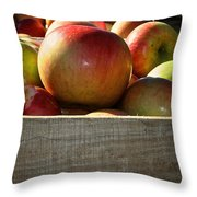 Honey Crisp Throw Pillow by Susan Herber