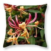 Honey Suckle Flowers Throw Pillow