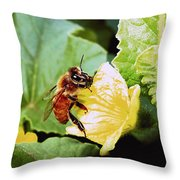 Honeybee And Cantalope Throw Pillow