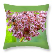 Honeybee On Milkweed Throw Pillow