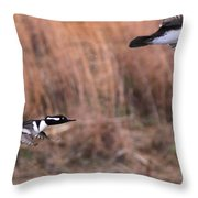 Hooded Merganser Gaining Altitude Throw Pillow