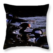 Hooded Mergansers And Moon Glare Throw Pillow
