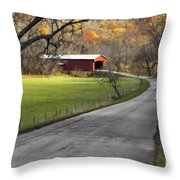 Hoosier Autumn - D007843a Throw Pillow