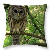 Hoot Hoo Dee Hoo Throw Pillow