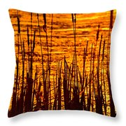 Horicon Cattail Marsh Wisconsin Throw Pillow