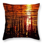 Horicon Marsh Sunset Wisconsin Throw Pillow