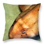 Horn Shark Throw Pillow