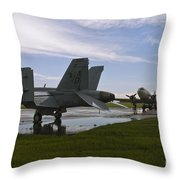 Hornet And Gooney After The Storm Throw Pillow