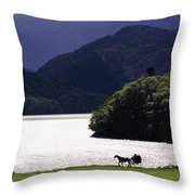 Horse And Buggy By Waterfront Throw Pillow