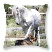 Horse And Dog Play Throw Pillow