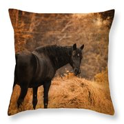 Horse And The Haystack Throw Pillow