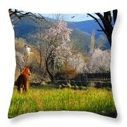Horse At Field Throw Pillow