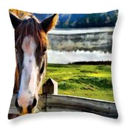 Horse At Lake Leroy Throw Pillow
