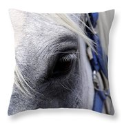 Horse At Mule Day Benson Throw Pillow