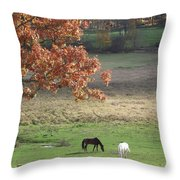 Horse Barn Hill Pasture Throw Pillow