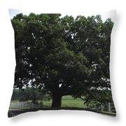 Horse Barn Hill Uconn  Throw Pillow