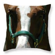 Horse Face Throw Pillow