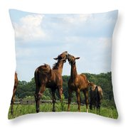 Horse Foul Play II Throw Pillow