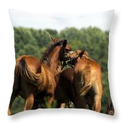 Horse Foul Play IIi Throw Pillow