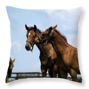 Horse Foul Play Vi Throw Pillow