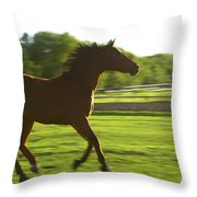 Horse Galloping Throw Pillow