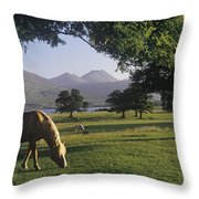 Horse Grazing On A Landscape Throw Pillow