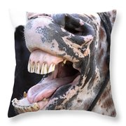 Horse Humor Throw Pillow