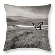 Horse In Pasture Throw Pillow