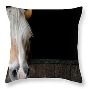 Horse In The Stable Throw Pillow